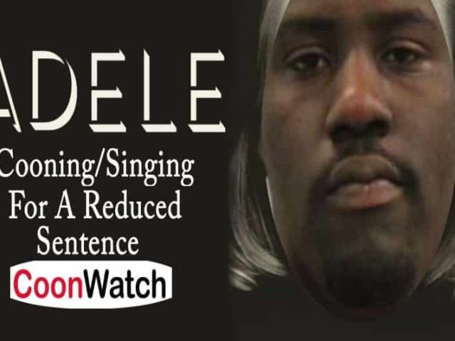 Cooning Singing An Adele Song For Reduced Sentence